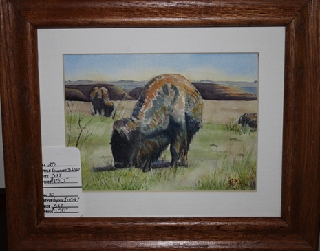 deb bison painting
