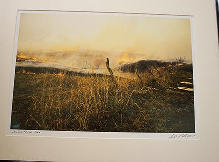 Ron pasture burn
